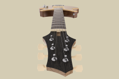 Custom_guitar_001_2017-Dec-13_03-00-06PM-000_CustomizedView2188418316